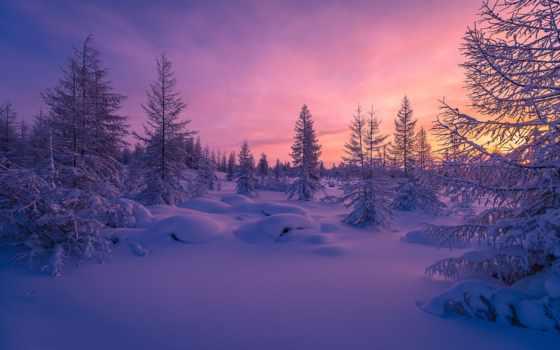 снег, winter, вечер, природа, закат