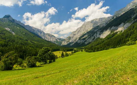 природа, полянка, горы, trees, фотообои, фотопанно, доставка, фотообоев, sale, nat,