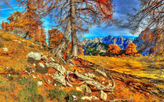 осень, горы, puzzle, природа, slovenia, online, trees, краньска, hdr, картинку, hdri,