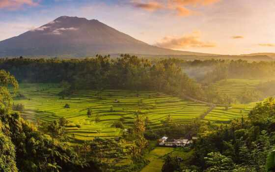 bali, поле, рис, sideman, aging, долина, indonesia, mount, summer, закат