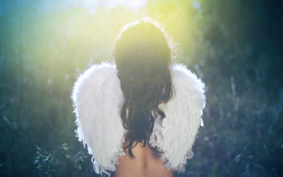 девушка, спина, крылья, angel, крыльями, сидит, трава, размытость, devushki,