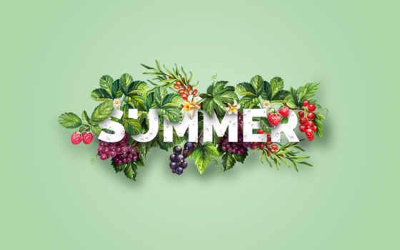 summer, цветы, goodfon, karmakar, малина, design, фоны, ягоды,