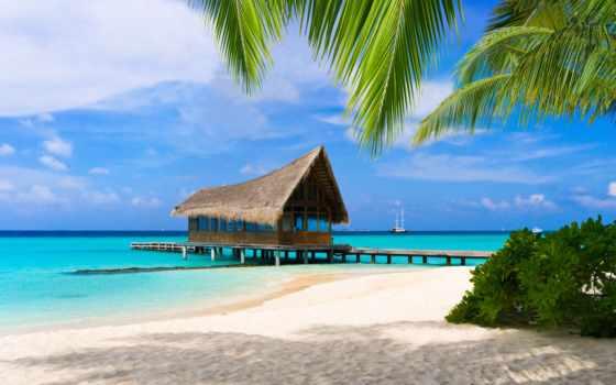 туры, мальдивах, maldives, bahama, пальмы, пляж, песок, tropics, oboi, tochka, adaları,