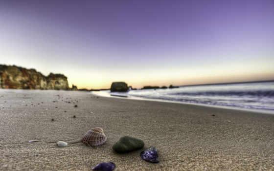 берег, песок, пляжи, water, seashell, ocean, пейзажи -, море, камни, ракушки,