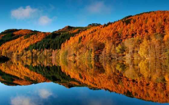 природа, landscape, горы, листва, страница, желтые, лес,