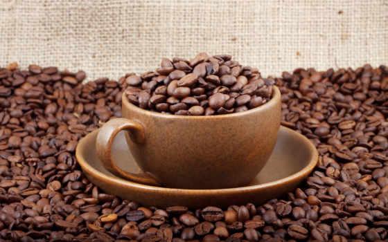 кофе, зерна, фотообои, кофейные,