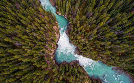 природа, страница, лес, озеро, widescreen, resolutions,