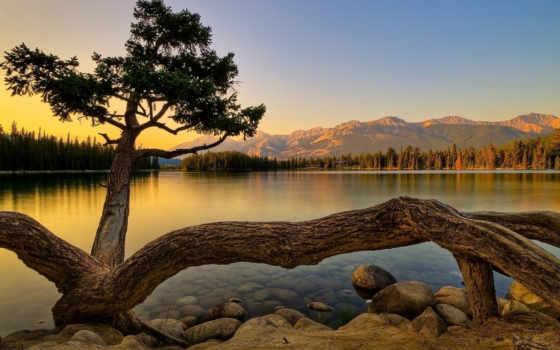 природа, landscape, del, free, озеро, гора