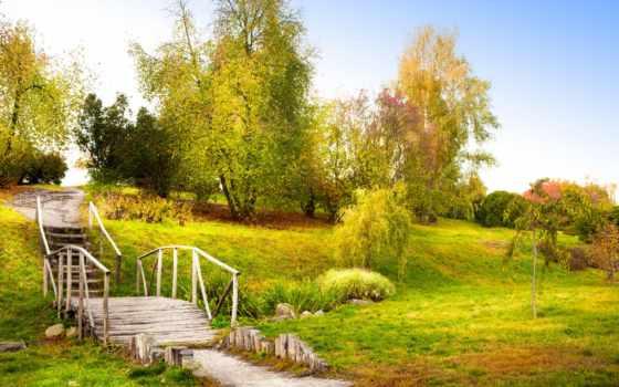 природа, деревья, картинку, картинка, листья, трава, save, мост, пейзаж, осень, выберите, старый, кнопкой, правой, мыши, скачивания, ступеньки,