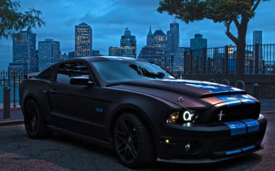 ford, mustang, car, mustangs,