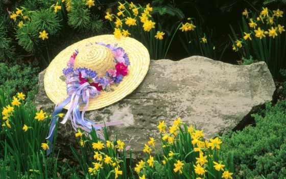 шляпа, цветы, камень