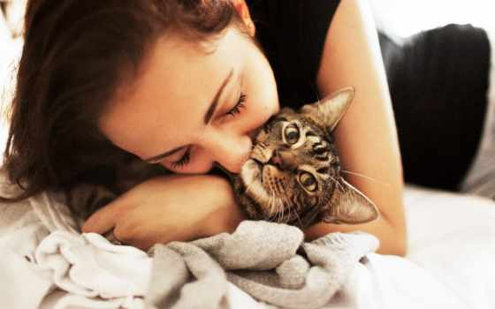 старая, кошками, virgin, кошек, нельзя, поцелуй, how, если, поцелуи, кошки, мне,