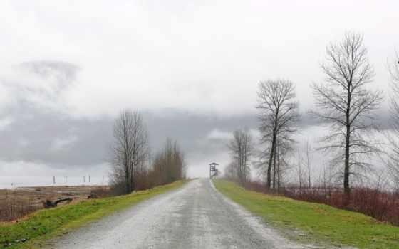 landscapes, природа, деревня, дорога, trees, roads, romeo, alfa, сельская,