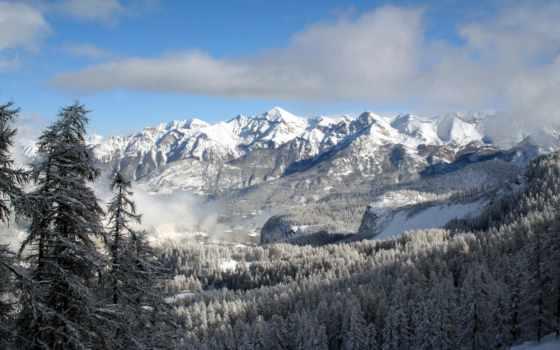 лес, горы, winter
