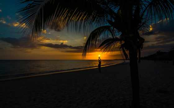 закат, пляж, природа, кубик, силуэт, красивые, palm, sun, прекрасна, life,
