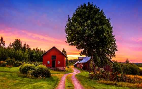 ферма, landscape, trees