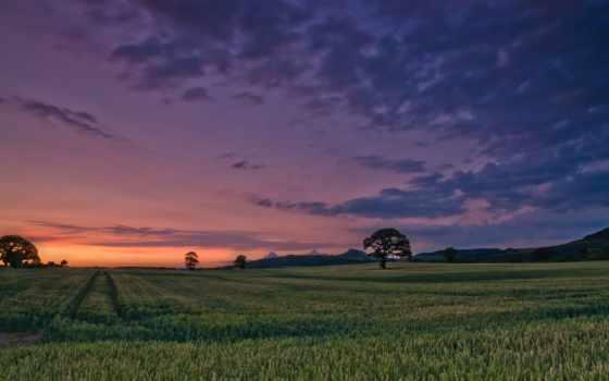 oblaka, небо, природа, landscape, луг, вечер, трава, растительность, горы, зелёный, дерево,
