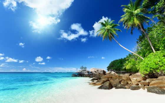 пляж, природа, iphone