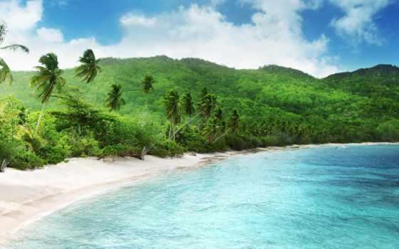 пляж, tropical, seychelles