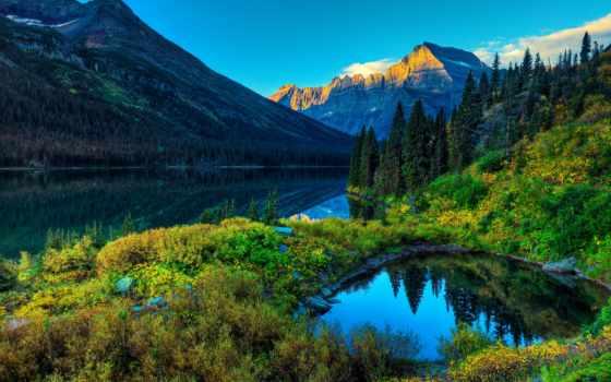 природа, горное, озеро, лес, дек,