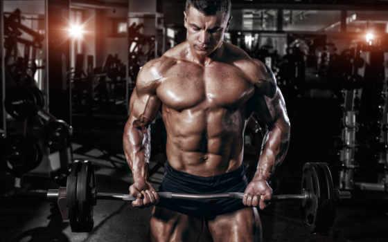 vascular, gym, штанга, мужик, пресс,