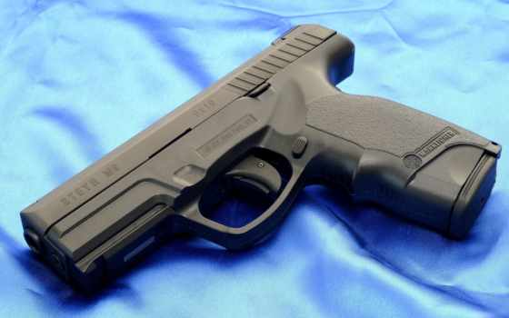 steyr, guns