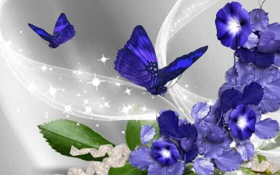 цветыбабочки