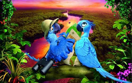 rio, janeiro, попугаи