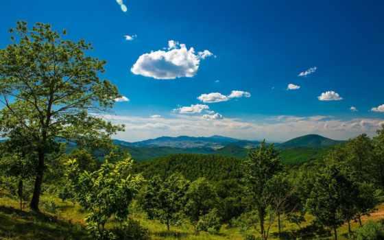 trees, панорама, горы, долина, landscape, одноэтажного, дома, мансардой, paisagem, проект,