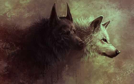 art, волки, волк