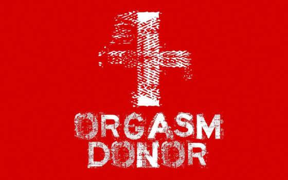 разное, донор, red, оргазма, оргазм,