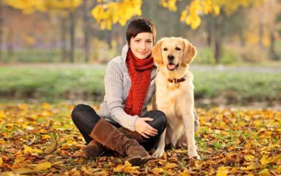 zhivotnye, домашние, людям, помогают, но, животных, домашних,