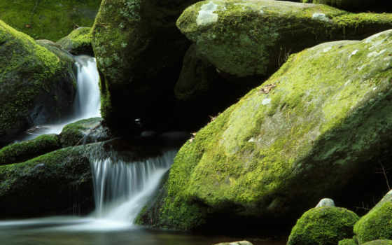 скалы, мох, ручей