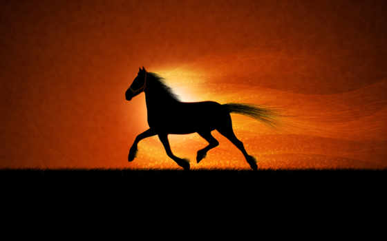 cavalo, сол, papel, cavalos, parede, sombra, por, pôr, аоь,