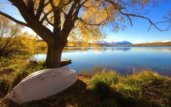 озеро, осень, дерево