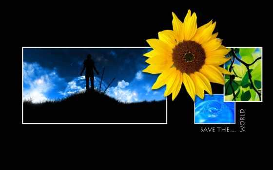 flowers, save, страница, purple, red, high, цветы, petals,