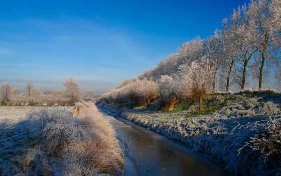 trees, winter, latvia, снег, качественные, фоны, погода, латвии, поле, категории,