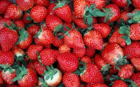 плод, природа, images, healthy, еда, world, клубника, наши, tapety,