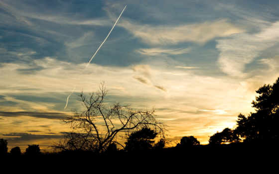 небо, взгляд, самолёт