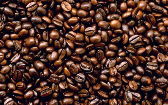 coffee, зерна, зооклубе, зернах, фруктов, овощей,