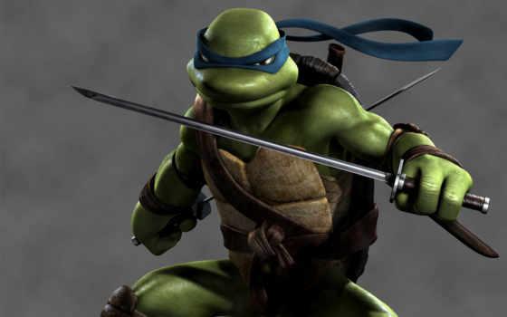 ninja, черепашки, turtles, черепашек, mutant, леонардо, teenage, лео, how, рисованный,