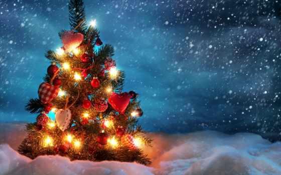 новогодняя, ночь, дерево