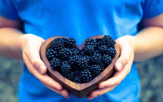blackberry, ягоды, ягода,