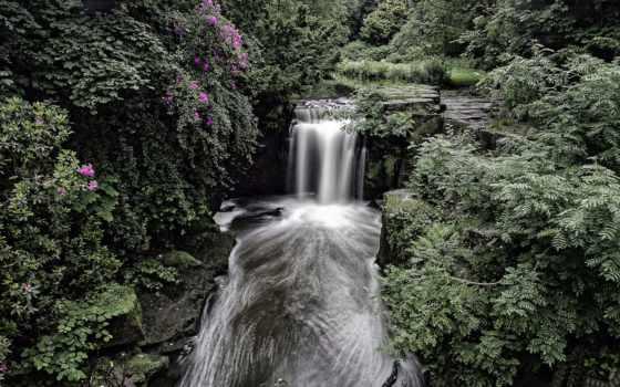 англия, ньюкасл, водопад, лес, dene, jesmond, великобритания, природа, ньюкасл,