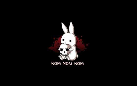 череп, темы, кролик, смартфона, грызет, nom, nomnom,