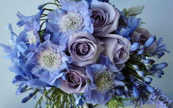 цветы, букет, красивые