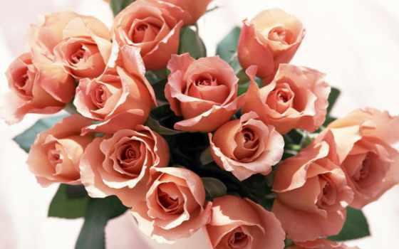 красивые, букет, цветы, цветов, сердца, роз,