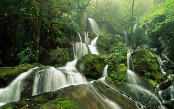 водопад, trees, лес, водопады, туман, мох, телефон, камни,