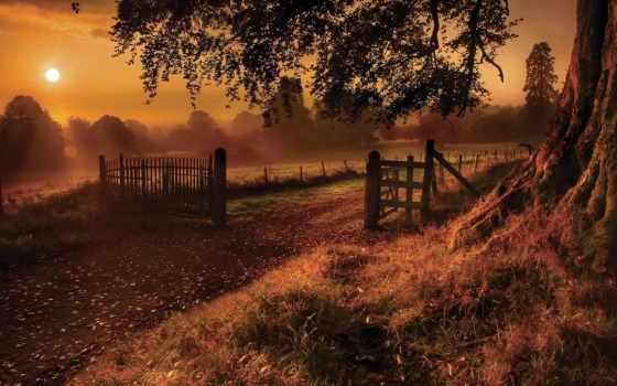 осень, sun, восход