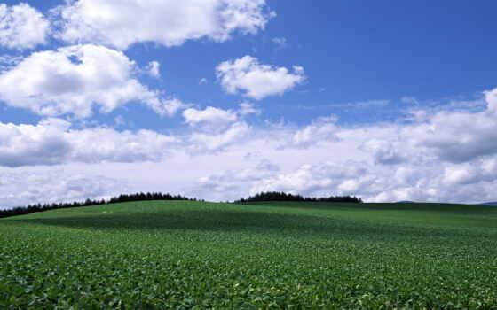 garden, chairs, blue, небо, серия, впервые, об,